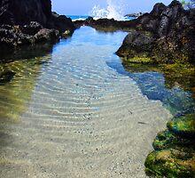 Splash by Ticker