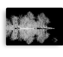 Winter at the Lake Canvas Print