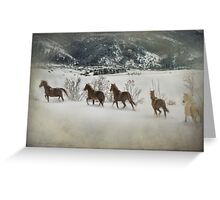 Loose Horses Greeting Card