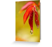 Abstract Reflection Greeting Card