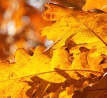 Golden Oak Leaves Sticker