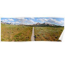 Sunshine meadows panorama II Poster