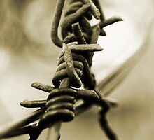 Barbwire  by Oupoot
