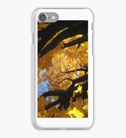 Beautiful Fall Afternoon - iCase iPhone Case/Skin