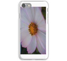 Soft Pink & White Flower Macro - iCase iPhone Case/Skin