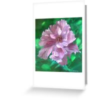 Frilly Hibiscus Greeting Card