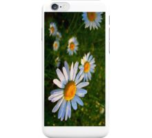 Wet Daisies - iCase iPhone Case/Skin