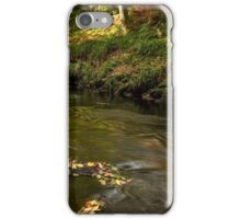 West Beck, Gothland, North Yorkshire iPhone Case/Skin