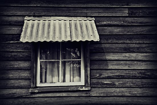 the watcher at the window by Rosemary Scott