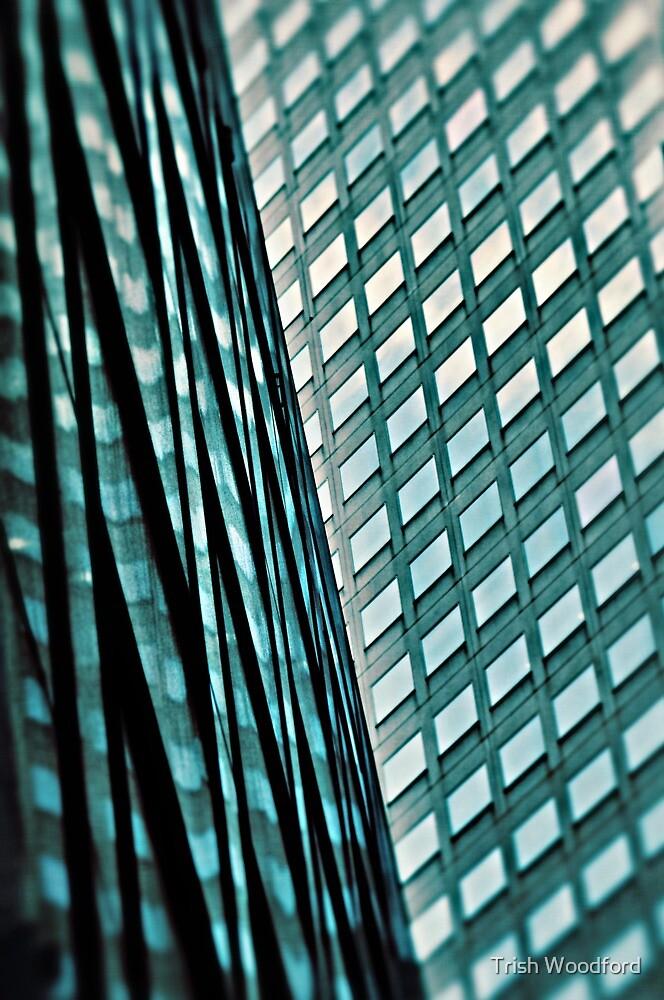 Urban Blues.... by Trish Woodford