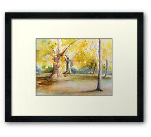 St.James Park, Autumn Framed Print