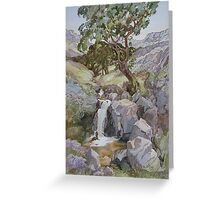 In the Rhinogs Greeting Card