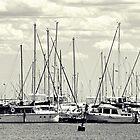 A Mess of Masts by Serenitas