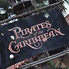 Pirates of the Caribbean by Patrick Lestrange
