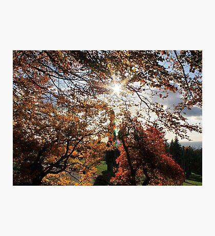 Fall in BC Photographic Print