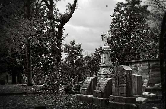 Oakland Cemetery by Karen  Burgess