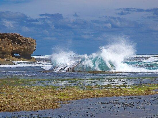 Splash by Dave Callaway