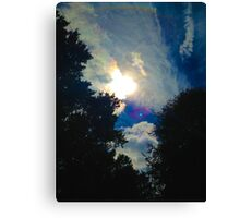 Sun in the Trees Canvas Print