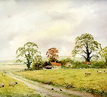 Country lane  by Neil Jones