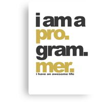 I am a programmer Canvas Print