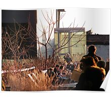 High Line, New York's Elevated Garden and Park Poster