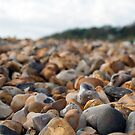 Lyme Regis Pebbles by Adam Dorman