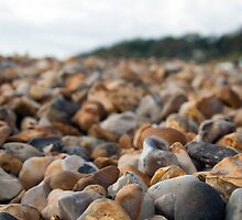 Lyme Regis Pebbles by Pig's Ear Gear