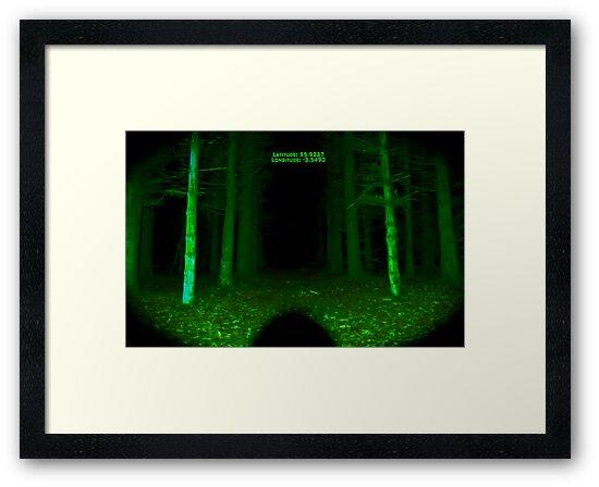 Night Vision by Den McKervey
