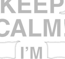 I Can't Keep Calm I'm Having A Bad Day Sticker