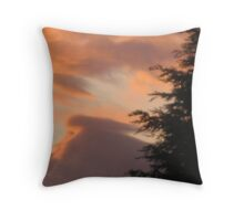 Today I woke up to a beautiful day 2 Throw Pillow