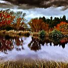 reflecting the Season by SouthernScape