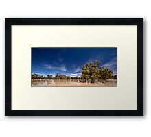 One Perfect Day - Menindee, NSW Framed Print