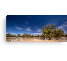 One Perfect Day - Menindee, NSW Canvas Print