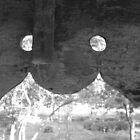 window to the world by Rishi Kant Joshi