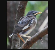 Another Mynah fledgling One Piece - Long Sleeve