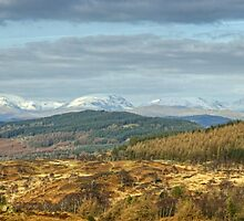 Views North From Rusland Heights by VoluntaryRanger