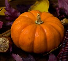 Pumpkin Spice by Sue  Cullumber