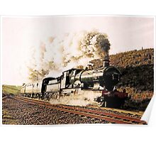 Steam Train in Landscape Poster