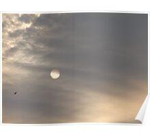 sun in shade Poster