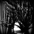 The Medusa by Ian Coyle