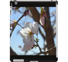 Baby Pink Cherry Blossoms iPad Case/Skin