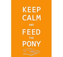 Keep Calm And Feed The Pony  Photographic Print