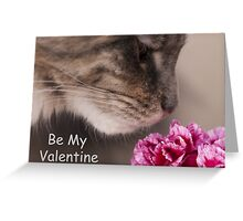 Be My Valentine Maine Coon Cat  Greeting Card
