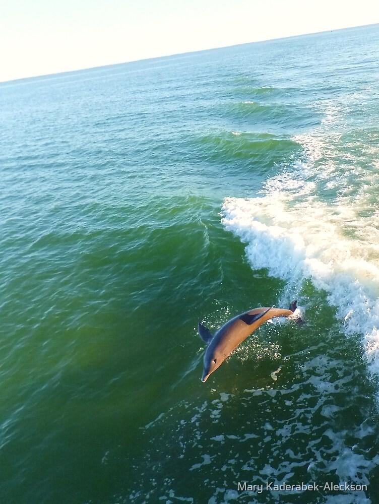Dolphin at Sea by Mary Kaderabek-Aleckson