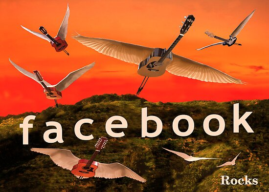 Facebook Rocks by Eric Kempson