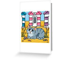 Tabby Cat Outside Beach Hut 12 Greeting Card