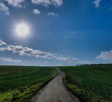 Country Lane by JEZ22