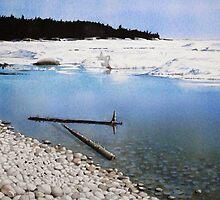 Ice at Pebble Beach by Douglas Hunt