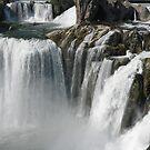 Shoshone Falls in 2009 at Twin Falls Idaho,USA by Brenda Dahl