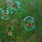 As Free As A Butterfly by jules572
